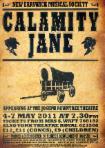 2011_2_calamity